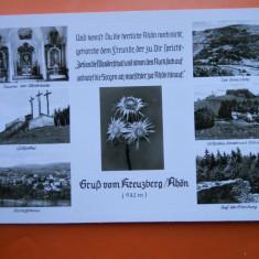 HOPCT 34228 GERMANIA KREUZBERG / RHON FLOARE DE COLT-EDELWEISS -NECIRCULATA, Printata