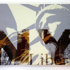 Tablou decorativ New York Liberty 30x20cm