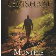 Muntele familiei Gray - Autor(i): John Grisham