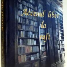 ACCESUL LIBER LA RAFT de MIRCEA CONSTANTINESCU, 2008 - Roman