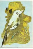 (A)carte postala(ilustrate) -Ilustratie de Constantin Baciu