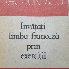 INVATATI LIMBA FRANCEZA PRIN EXERCITII - Elena Gorunescu - Curs Limba Franceza
