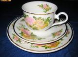 122A-Set servit cafea-ceai 1 persoana portelan desing floral cu trandafiri.