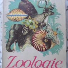 Zoologie Manual Pentru Clasa A Vi-a - C. Bogoescu, Al. Dabija, A. Stoicescu, 401002 - Carti Agronomie