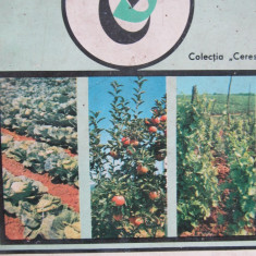 Legume pomi si vita de vie pe langa casa -T. Groza, M. Voinea, ... - Carte gradinarit