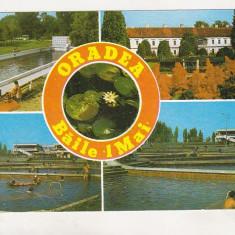 Bnk cp Oradea - Baile 1 mai - circulata - Carte Postala Crisana dupa 1918, Printata