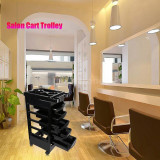 Ucenic Coafor  Cosmetica Mobilier Salon 5 Sertare