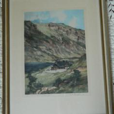 Tablou/ litografie hartie E. H. COMPTON artist faimos sec. XIX