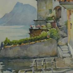 Litografie hartie sec. al XIX-lea / tablou