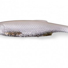 Shad savage lb 3d bleak paddle tail white silver 10.5cm, 5buc/plic - Fly Fishing