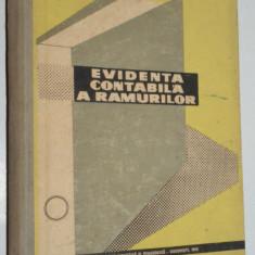 Evidenta contabila a ramurilor- 1962 - Carte Contabilitate