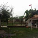 Vand casa in Rosiori (Bihor) - Casa de vanzare, 120 mp, Numar camere: 4, Suprafata teren: 3000