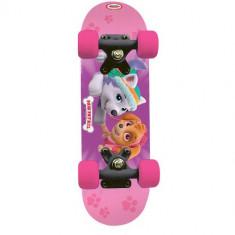 Mini Skateboard Paw Patrol 43 cm