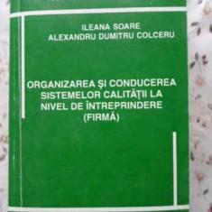 Organizarea Si Conducerea Sistemelor Calitatii La Nivel De In - Ileana Soare, Alexandru Dumitru Colceru, 401723 - Carte Marketing