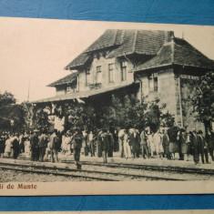 VALENII DE MUNTE Gara si VALENI DE MUNTE Universitatea populara N. Iorga - Carte Postala Transilvania dupa 1918, Circulata, Fotografie