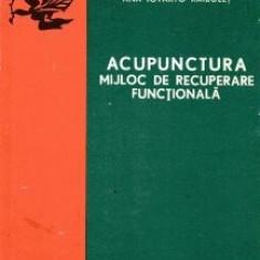 Acupunctura, mijloc de recuperare functionala - Tiberiu Raibulet - Carte Recuperare medicala