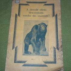 Petre P. Paulini - A dovedit stiinta descendenta omului din maimuta? - Carti Crestinism
