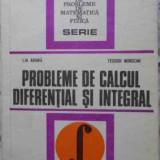 Probleme De Calcul Diferential Si Integral - Lia Arama, Teodor Morozan, 401857 - Carte Matematica