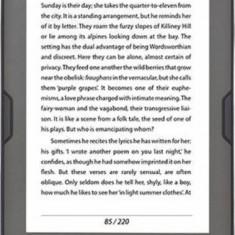 EBook reader Bookeen Cybook Muse HD 8GB Black