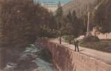CARTE POSTALA SLANIC-MOLDOVA Paraul Slanicului si Isvorul Nr.1, Circulata, Printata, Slanic Moldova