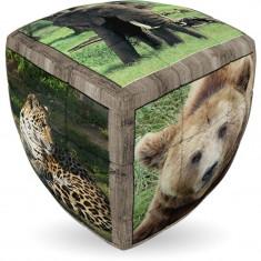 V-Cube Animale salbatice - Jocuri Forme si culori