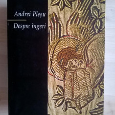 Andrei Plesu - Despre ingeri - Filosofie