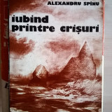 Alexandru Spinu - Iubind printre crisuri - Roman