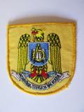 Cumpara ieftin Emblema textila(73 x 70 mm) Academia Tehnica Militara