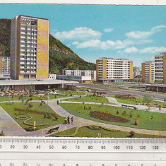 bnk cp Piatra Neamt - Hotel Ceahlaul - circulata - Kruger 1137/2