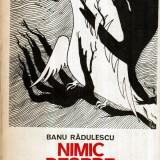 Nimic despre fericire - roman - Autor(i): Banu Radulescu