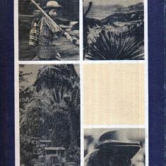Tarile Americii Centrale - Autor(i): Constantin Bucur - Ghid de calatorie