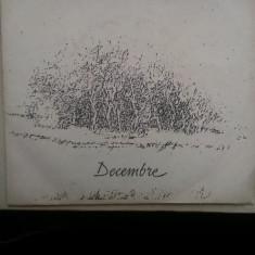 Nicu Alifantis – Decembre - Muzica Folk Altele, VINIL
