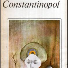 Drumul spre Constantinopol - Autor(i): Nicoleta Voinescu - Roman