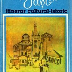 Iasi - Itinerar cultural-istoric - Autor(i): Constantin Closca - Ghid de calatorie