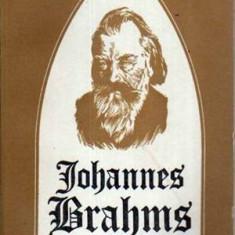 Johannes Brahms - Autor(i): Ioana Stefanescu - Carte Arta muzicala