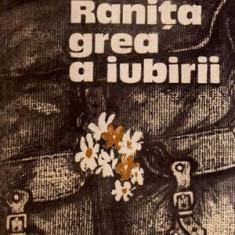 Ranita grea a iubirii - roman - Autor(i): Vasile Baran