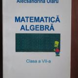 Matematica. Algebra (clasa a VII-a) - Carte Matematica