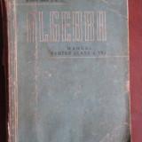 Algebra: Manual pentru clasa a VII-a - Carte Matematica