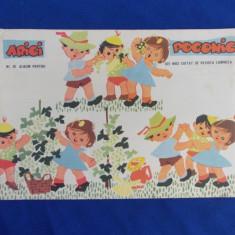 ARICI POGONICI * ALBUM PENTRU CEI MICI - NR. 10 / 1963 - Revista scolara