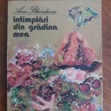 Intamplari din gradina mea - Ana Blandiana / C00P - Carte de povesti
