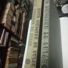 ATLAS DE ANATOMIE UMANA - Mircea IFRIM - 3 volume