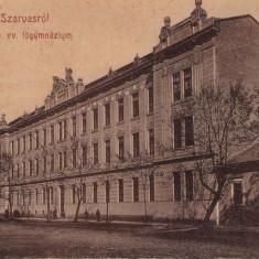 CARTE POSTALA Udvozlet Szarvasrol ~ Ag.hitv.ev.fogymnazium ~ - Carte Postala Crisana 1904-1918, Necirculata, Printata, Arad