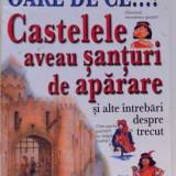 OARE DE CE...?CASTELELE AVEAU SANTURI DE APARARE SI ALTE INTREBARI DESPRE TRECUT de PHILIP STEELE, 2004 - Carte de povesti