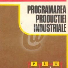 Programarea productiei industriale (Ed. Didactica si Pedagogica) - Carti Automatica