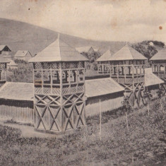 CARTE POSTALA BAILE BAZNA ~ Baia de namol ~ - Carte Postala Transilvania dupa 1918, Necirculata, Printata, Sibiu