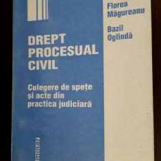 DREPT PROCESUAL CIVIL CULEGERE DE SPETE SI ACTE DIN PRACTICA JUDICIARA-OGLINDA - Carte Drept procesual civil