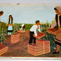Plansa didactica din perioada comunista - RPR / RSR - pionieri in practica - Afis