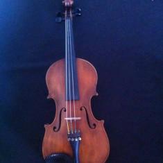Vand vioara 4/4 Antonius Stradivarius Cremonenfis (copy)