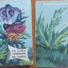 Vladimir Braghin, In tara codrilor de iarba, Editura Tineretului, 1962 - Carte educativa