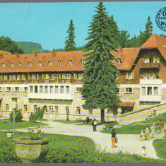CPI (B8953) CARTE POSTALA - BORSEC, JUD. HARGHITA - Carte Postala Moldova dupa 1918, Circulata, Fotografie